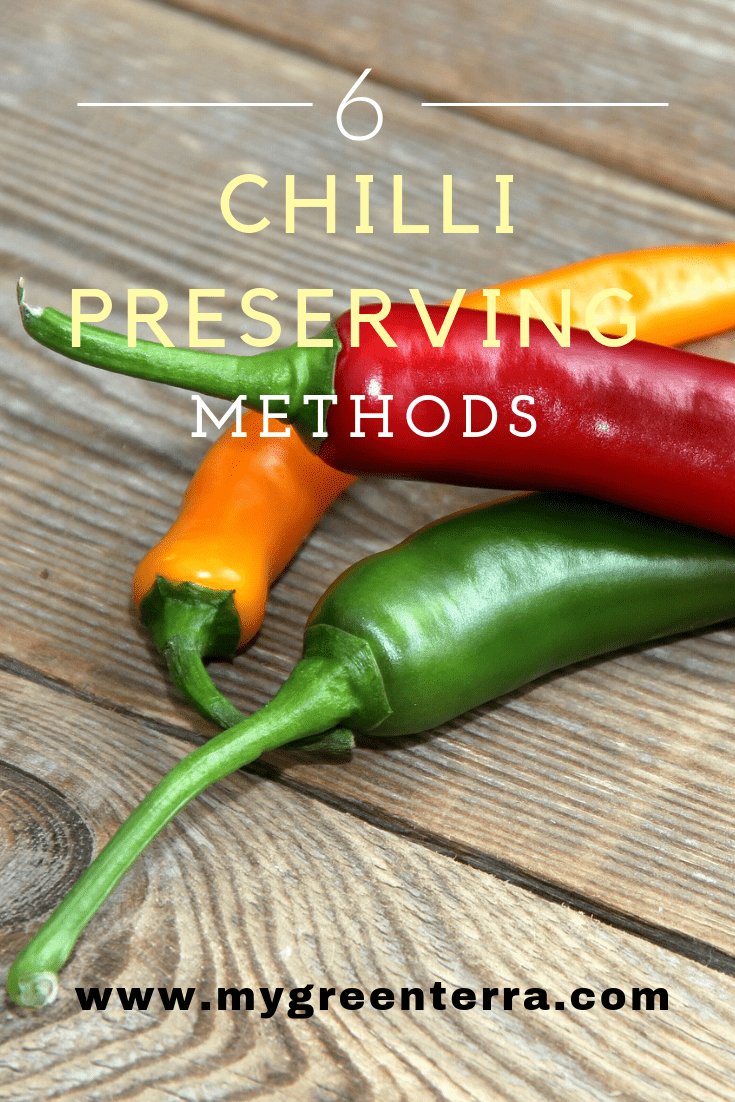 6 Methods to Preserve Chillies
