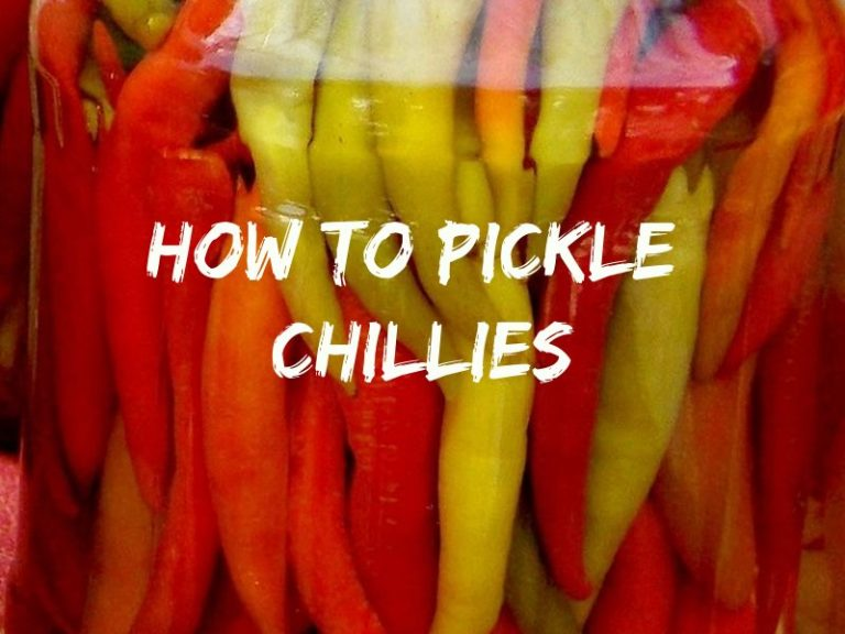 How To Pickle Chillies