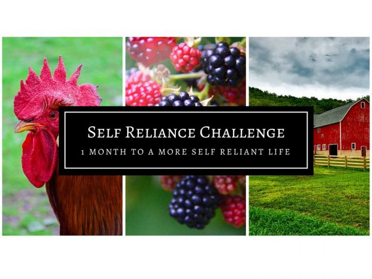 Self Reliance Challenge For Month Of May
