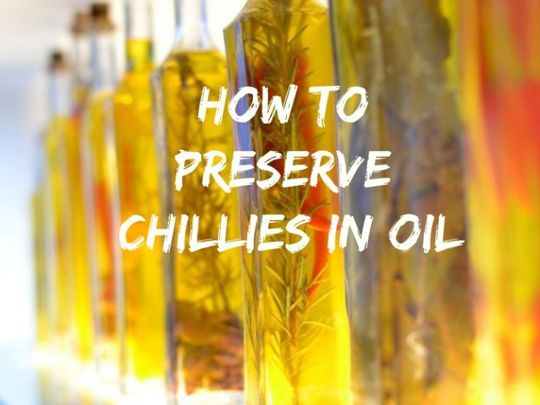 How To Preserve Chillies in Oil