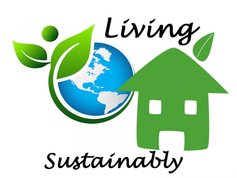 3 Easy Tips Towards A Sustainable Lifestyle