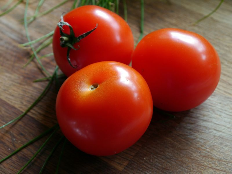 Tips for Tomato Growing