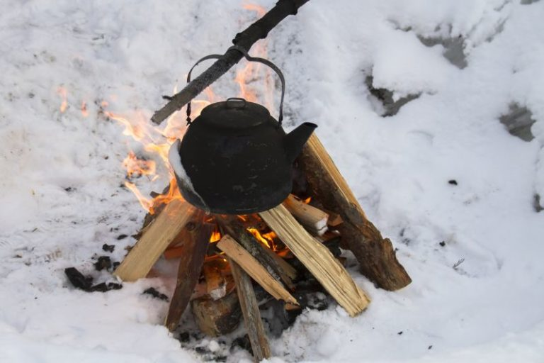 5 Basic Survival Skills You Can Practice In Your Backyard
