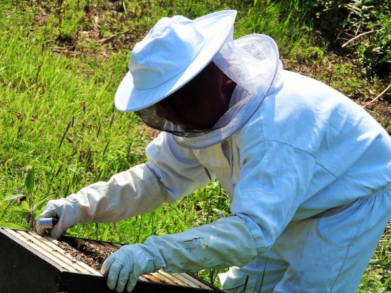 Beekeepers suit