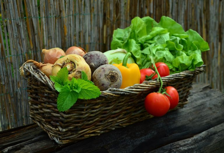 Growing Your Own Food For Beginners